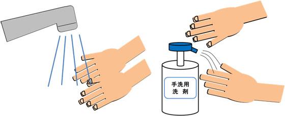 ②流水で両手の汚れを洗い落とす 手洗い用洗剤を付ける