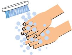 ③洗剤を泡立て、もみ洗いする