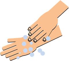 ④指先、指の間、手の甲、手首まで、しっかり擦り洗いする 流水で洗剤をよく洗い流す