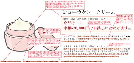 ②化粧品点検例