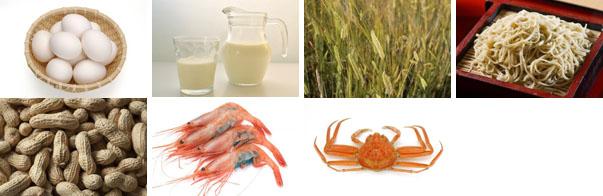 アレルゲン食品のイラスト(卵、乳、小麦、そば、落花生、えび、かに)